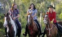 Sunshine Coast Hire Cars, Things to do: The Mooloolah Valley Riding Centre