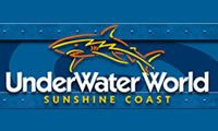 Sunshine Coast Hire Cars, things to do: Underwater World